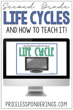 Looking for low-prep, student-friendly life cycle activity ideas? This plant life cycle activity pack will help you plan your science class with ease. Vocabulary Sentences, Vocabulary Cards, Interactive Activities, Hands On Activities, Fact Slides, Second Grade Science, Sentence Writing, Science Curriculum, Reading Passages