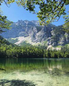 69025256_2435511273349619_4888789487229861888_n Mountains, Nature, Travel, Pet Dogs, Naturaleza, Viajes, Destinations, Traveling, Trips