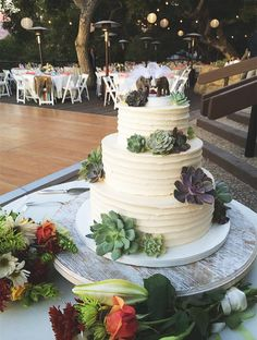 Rustic 3-tier wedding cake surrounded by fresh succulents and topped with two sweet elephants!