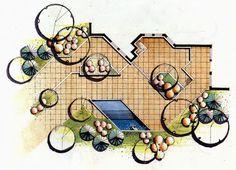 [Tổng hợp] Diễn họa cây cối và vật liệu[Sưu tầm] Diễn họa cây trong công trình - DIỄN HỌA TAY.com