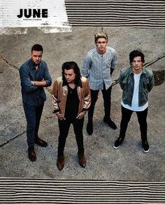 One Direction Official 2017 Calendar - June