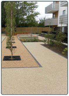 Trees in resin bordered Stamped Concrete Driveway, Resin Driveway, Resin Patio, Driveway Paving, Driveway Design, Concrete Driveways, Driveway Landscaping, Driveway Ideas, Walkway