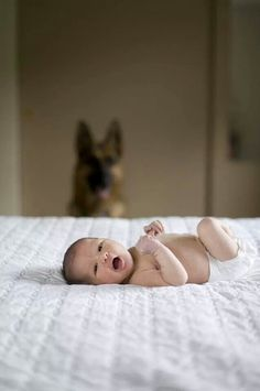 Love how the dog is in the background but the focus is on the baby