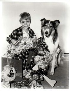 Timmy and Lassie at Christmas