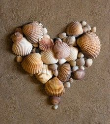 Gathering shells from our travels and making something like this to hang on our wall would be cute.