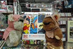 The Ewoks at Sarge's Comics  October 2010