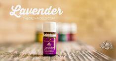 Valor Essential Oil Uses, Lavender Essential Oil Uses, Joy Essential Oil, Homemade Essential Oils, Frankincense Essential Oil, Essential Oil Blends, Lavendar Oil, Young Living Oils, Young Living Essential Oils