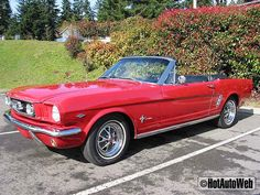 1966 Mustang Convertible  Love that car! this WILL be my mid life crisis car...but PINK!!! or purple, or turquoise!! either way...a girl can dream