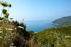 Lichnos Beach, located in Parga - Epirus - Greece
