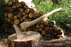 I still want a tree farm. Forest Management for the Farm - Property - GRIT Magazine Lumberjack Style, Container Vegetables, Got Wood, Forest Photography, Backyard Farming, Down On The Farm, Small Farm, Farm Gardens, Parcs
