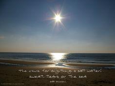 Foto gemaakt bij het strand van Julianadorp. The cure for anything is salt water: sweat, tears or the sea.