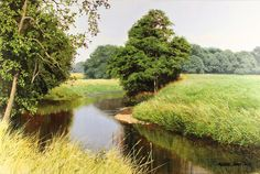 Michael James Smith, Original oil painting on canvas, Summer in Derbyshire