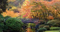 Seis jardines emanan belleza y tranquilidad a sus visitantes