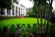 Traditional Garden District 9