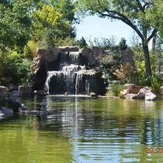 ABQ BioPark Botanic Garden, Albuquerque, New Mexico - Google Search