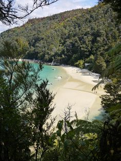 Able Tasman National Park New Zealand