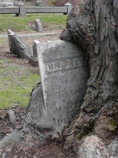 Erie cemetery Erie, Pa