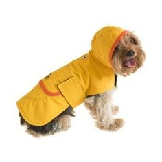 Petco offers a variety of pet supplies and pet food. Shop online now for your pet products. Large Dogs, Small Dogs, Small Small, Dog Raincoat, Dog Items, Pink Dog, Dog Coats, Pet Gifts, Cowls