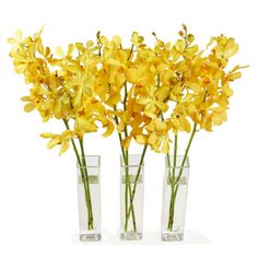 Exactly what I was picturing for my centerpieces - 3-4 clustered vases with yellow mokara orchids