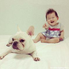 ズーム・イン♥️ #frenchbulldog #frenchie #dog #daughter #babygirl #フレンチブルドッグ #女の子