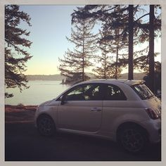 #Fiat #Fiat500 #holiday #day #beauty #onboardfiat Meet Audrey!