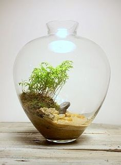 terrariums made from trip/travel momentos. Beaches, deserts, specific landscapes.