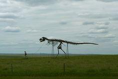 South Dakota by sarbear3096, via Flickr