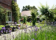 Broadcroft   United kingdom Hampshire England. Afternoon tea and a gorgeous garden. Charming hosts love having children to stay - suppers and babysitting too!  Walk to Keyhaven for lunch