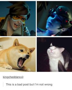 Overwatch Video Game, Overwatch Comic, Overwatch Memes, Overwatch Fan Art, Gamer Humor, Gaming Memes, Overwatch Community, Video Game Memes, Video Games