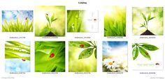 Grafica2411-Naturaleza-Animales-Paisajes-Flores-Cascadas-Estaciones-Insectos+Ladybug+(from+grafica2411+-+Vinilos+Decorativos+-+Vitrales+Vinilo+-+Vinilos+Pared+-+Vinilos+Frases+-+Etiquetas+Vinilo)