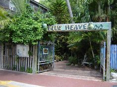 Blue Heaven Restaraunt in Key West!  Love this place!  There are actually roosters/chickens, cats, dogs, roaming around in the outdoor dining area!  It's tropical and the food and drinks are fantastic!