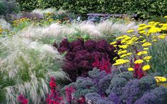 Ornamental Potager at Cambo Gardens Most Beautiful Gardens, Beautiful Flowers, Beautiful Dream, Landscape Design, Garden Design, Landscape Architecture, Types Of Kale, Champs, Mexican Feather Grass