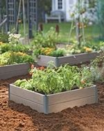 5 Basic Steps for Starting a Vegetable Garden