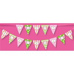 Classic Carnival Birthday Pink and Green Banner