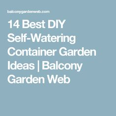 14 Best DIY Self-Watering Container Garden Ideas | Balcony Garden Web