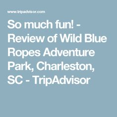 So much fun! - Review of Wild Blue Ropes Adventure Park, Charleston, SC - TripAdvisor