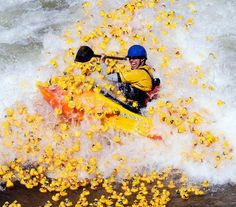 Kayaking through Rubber Ducks