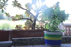Flowerpot made of empty plastic cup