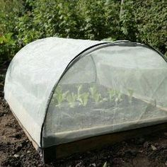 Raised Bed Micromesh Pest Protection Cover