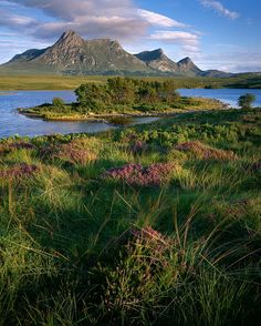 Looks like it's time to give Scotland another visit! The Shores of Lochan Hakel in Sutherland, by Ross J Brown.