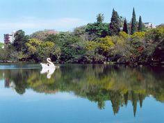 Porto Alegre - RS - Brasil - (Parque da Redenção)