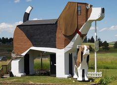 """O Dog Bark Park Inn, em Cottonwood, Estados Unidos, é um hotel com o formato de um cachorro da raça beagle. Na verdade, são dois cães, um com 3,5m de altura, que serve apenas de """"objeto decorativo"""", e o outro, para receber os hóspedes, que tem 10m de altura. O que você acharia de passar algumas noites dentro desse hotel?"""