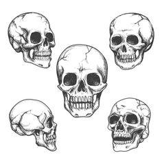 Hand drawn skulls by @Graphicsauthor