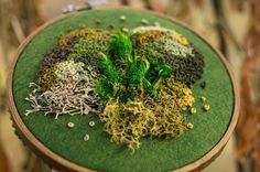 Emma Mattson pays homage to lichen with a collection of intricate moss embroidery. Using a variety of textures, she creates sculptural hoop art. Paper Embroidery, Learn Embroidery, Embroidery Ideas, Floral Embroidery, Contemporary Embroidery, Moss Stitch, Textile Artists, Bead Art, How To Dry Basil