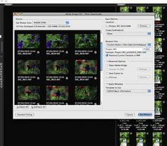 Digital Workflow Using Photoshop and Adobe Camera Raw and Bridge
