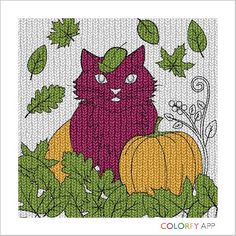 Romen picture of a cat