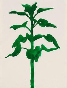 LITHOGRAPHIE PLANTS - ELLSWORTH KELLY