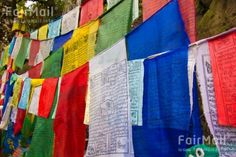 Photographed by Akaash Ram - India - Red - Green - White - Yellow - FairMail - Fair Trade Photos - IAKR-0274