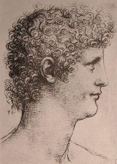 Leonardo Salai - Leonardo da Vinci - Wikimedia Commons