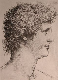 Drawing of Salai, 1500  Leonardo da Vinci